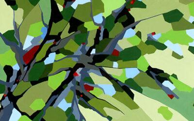 Naturens farver og former – en indre orden i kaos